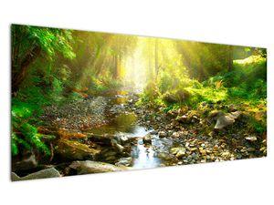 Obraz řeky v zeleném lese (V020942V12050)