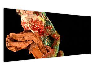 Obraz chameleona na větvi (V021125V12050)