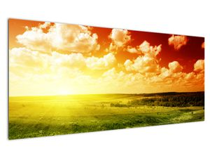 Obraz louky se zářícím sluncem (V021174V12050)