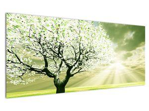 Obraz stromu na lúke (V021282V12050)