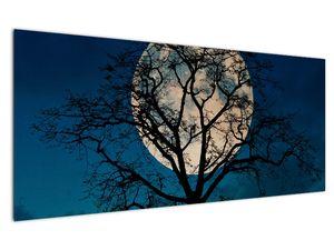 Obaz stromu s úplňkem (V021355V12050)
