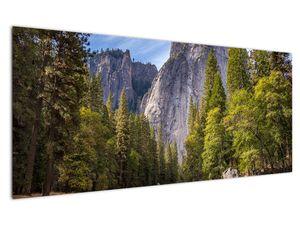 Kép - A Yosemite szikla alatt (V021691V12050)