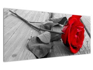 Slika crvene ruže (V022288V12050)