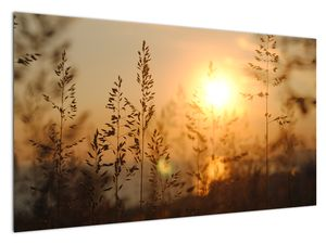 Slika izlaska sunca (V020870V12070)