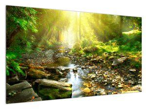 Slika rijeke u zelenoj šumi (V020942V12070)