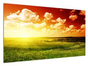 Bild einer Wiese mit strahlender Sonne (V021174V12070)