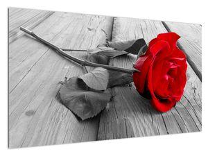 Slika crvene ruže (V022288V12070)
