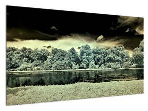 A víz felszínének képe (V022315V12070)