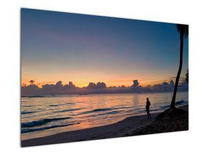 Kép egy nőről a tengerparton (V020204V12080)