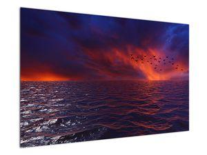 Obraz moře s ptáky (V020351V12080)