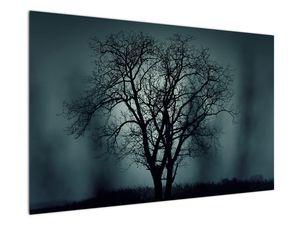 Obraz stromu v zatmění (V020675V12080)