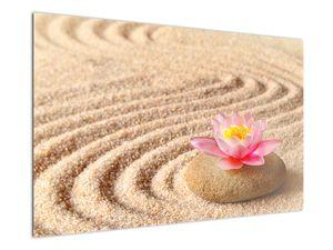 Obraz kameňa s kvetinou na piesku (V020864V12080)