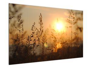 Obraz východu slunce (V020870V12080)