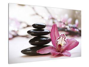 Obraz masážních kamenů a orchidee (V020910V12080)