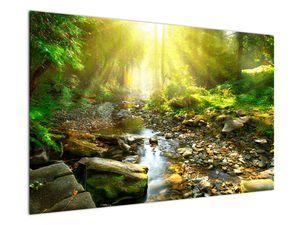 Obraz řeky v zeleném lese (V020942V12080)