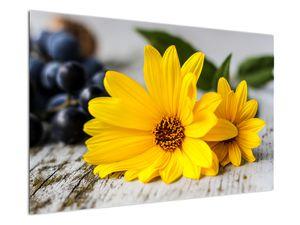 Obraz žluté květiny (V020952V12080)