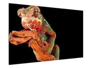 Obraz chameleona na větvi (V021125V12080)