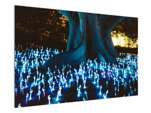 Obraz - Magický strom (V021631V12080)