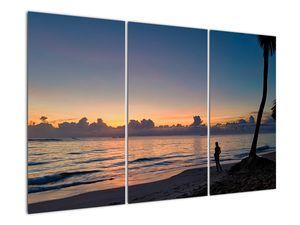 Kép egy nőről a tengerparton (V020204V120803PCS)