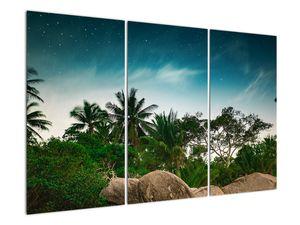 Tablou - palmierii (V020239V120803PCS)