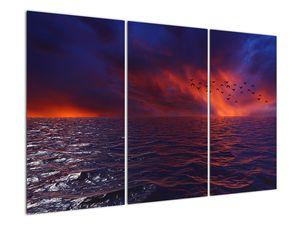 Obraz moře s ptáky (V020351V120803PCS)