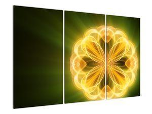 Obraz žluté květiny (V020451V120803PCS)