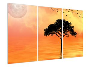 Obraz stromu v západu slunce (V020480V120803PCS)