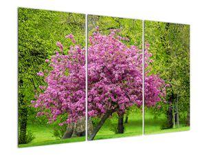 Obraz rozkvetlého stromu na louce (V020654V120803PCS)