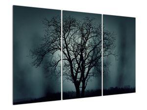 Obraz stromu v zatmění (V020675V120803PCS)