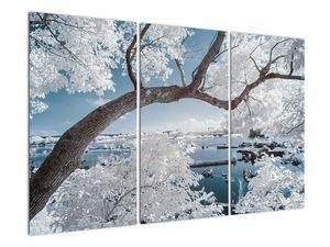 Obraz zasněženého stromu u vody (V020718V120803PCS)