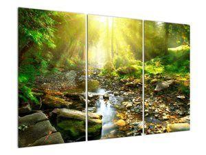Obraz řeky v zeleném lese (V020942V120803PCS)