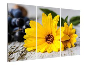 Obraz žluté květiny (V020952V120803PCS)