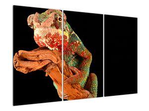 Obraz chameleona na větvi (V021125V120803PCS)