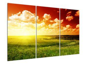 Obraz lúky so žiariacim slnkom (V021174V120803PCS)