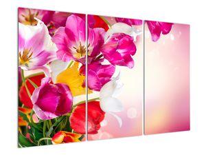 Obraz tulipánov (V021295V120803PCS)