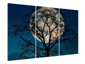 Obaz stromu s úplňkem (V021355V120803PCS)