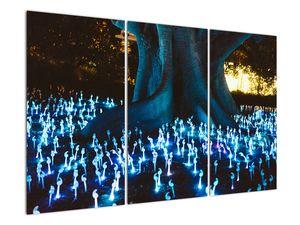Obraz - Magický strom (V021631V120803PCS)
