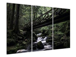 Obraz z černého lesa (V021686V120803PCS)