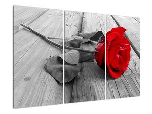 Slika rdeče vrtnice (V022288V120803PCS)