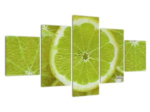 Kép - citrom szelet (V020164V12570)