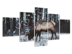 Obraz - jeleň v zime (V020179V12570)