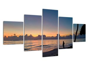 Kép egy nőről a tengerparton (V020204V12570)
