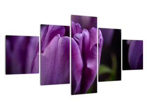 Tablou cu flori de lalele (V020215V12570)
