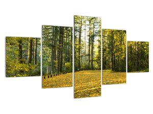 Tablou - pădurea toamna (V020218V12570)