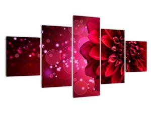 Obraz červené kvety (V020807V12570)