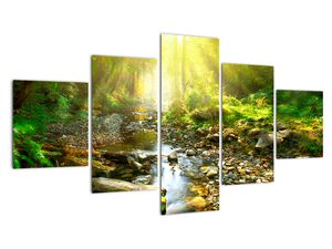Obraz řeky v zeleném lese (V020942V12570)