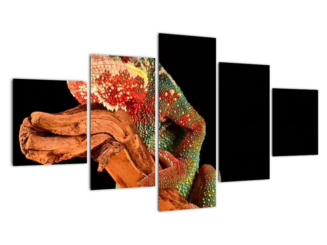 Obraz chameleona na větvi (V021125V12570)