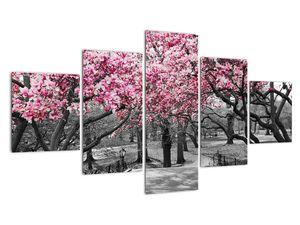 Obraz stromů Magnolíie (V021344V12570)