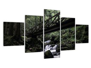 Obraz z černého lesa (V021686V12570)