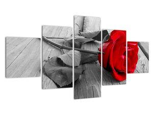Obraz červených ruží (V022288V12570)